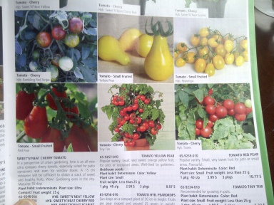 seed catalogue 1